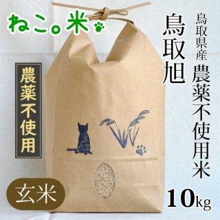 鳥取旭玄米10kg