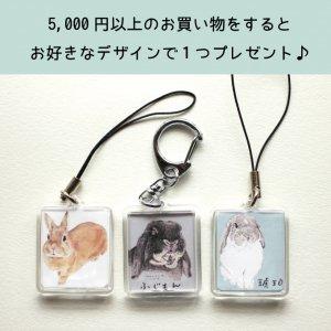 【5,000円以上お買い物された方限定】【期間限定】お好きなデザインでプレゼント☆