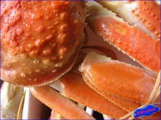 新物「ボイルずわい蟹3kg」...人気のカナダ産!!