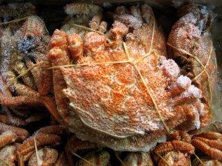 味は毛蟹以上!!「栗蟹20尾で4kg」-濃厚な味わい-