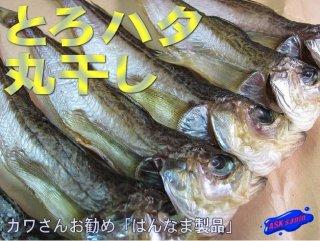 鳥取ブランド商品!!「とろハタ、丸干し22尾」-深海の珍味-