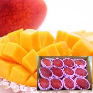 【受付終了】台湾アップルマンゴー 5kg(9〜12個入り)6月下旬〜7月下旬頃お届け