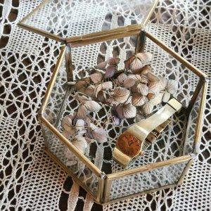 真鍮ガラス・アクセサリーボックス・(L)・アンティーク加工ガラスケース