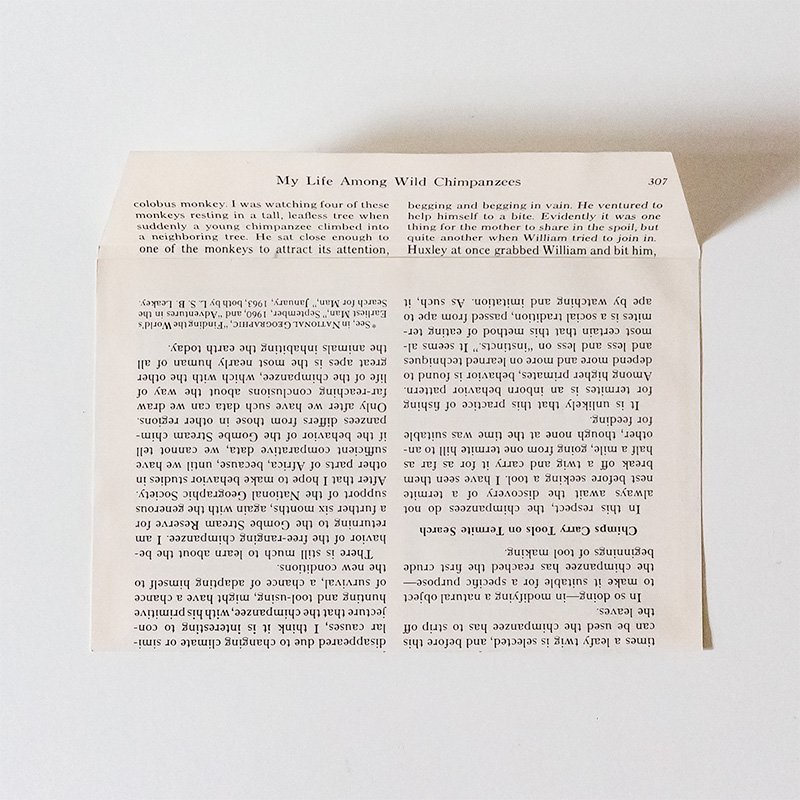CHARKHA チャルカ ジオグラフィック封筒