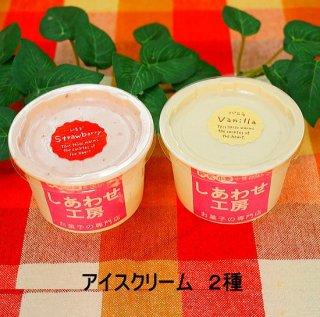 アイスクリーム(大豆、ゼラチン使用)