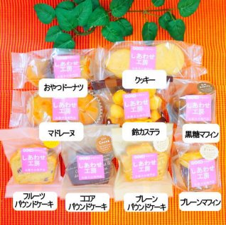 (特ア27不使用)焼き菓子セット9品