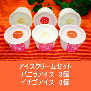 アイスクリームセット(大豆ゼラチン含)