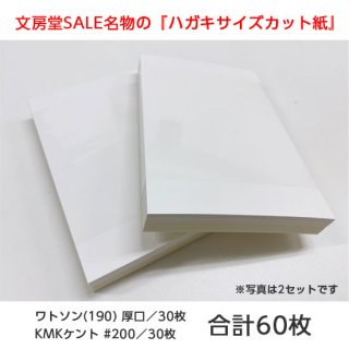 【文房堂】ポストカードサイズカット紙 (白)