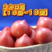 ルネッサンストマト2.0キロ箱