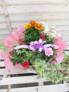 季節の花でおまかせ寄せ鉢