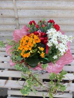 母の日カーネーションと季節の花の寄せ鉢