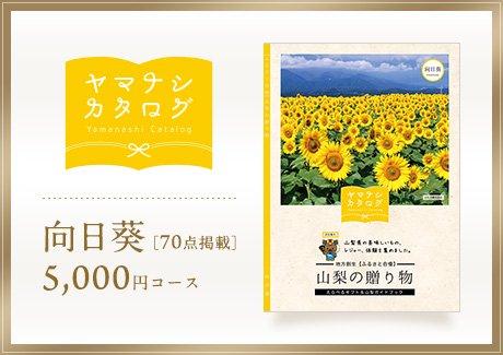 向日葵5000円コース