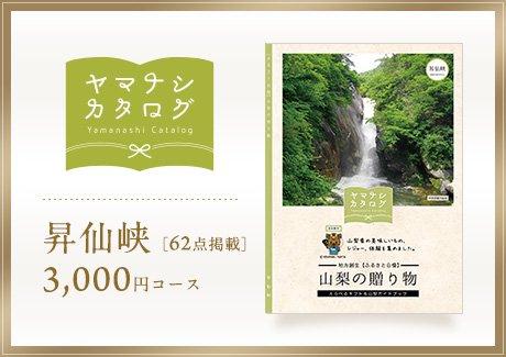 昇仙峡3000円コース