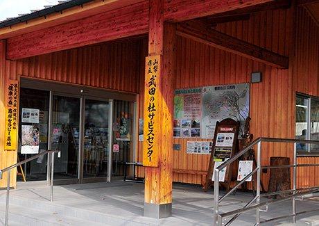 武田の杜森林セラピー体験&湯村温泉入浴・弁当付(3名様)