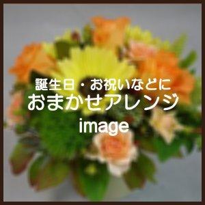 おまかせアレンジ3,780円