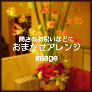 おまかせアレンジ9,720円