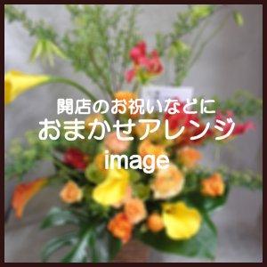 おまかせアレンジ10,800円