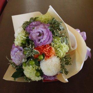 Shiun-紫雲-