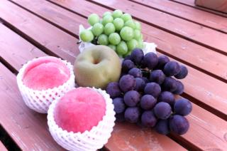 旬の果物セット(M)