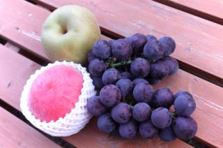 旬の果物セット(S)