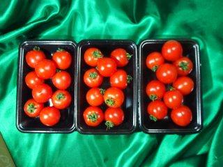 匠のフルーツトマト (3P)