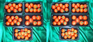 匠のフルーツトマト (10P)