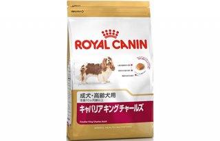 ロイヤルカナン / キャバリア キング チャールズ 成犬〜高齢犬用