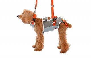 歩行補助ハーネス LaLaWalk 小型犬・ダックス用サポーターパッド付きプリンセス