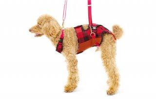 歩行補助ハーネス LaLaWalk 小型犬・ダックス用スクール 赤チェック