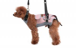 歩行補助ハーネス LaLaWalk 小型犬・ダックス用スクールガール