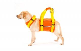 歩行補助ハーネス LaLaWalk 大型犬用 ネオプレーン