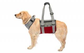 歩行補助ハーネス LaLaWalk 大型犬用 トリコロール
