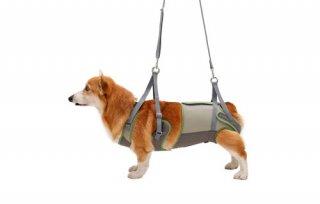 歩行補助ハーネス LaLaWalk 中型犬・コーギー用 ボーダーマスタード