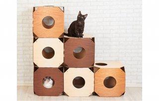 Katt3(キャット3) シングルキューブ