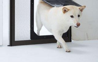 犬猫出入り口/網戸専用