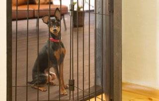 ウェルカムドッグフェンス/ドア用犬フェンス