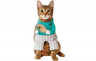 猫用変身着ぐるみウェア 配達員/ペティオ