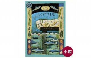 ロータス / ドッグフード / グレインフリーフィッシュレシピ 小粒