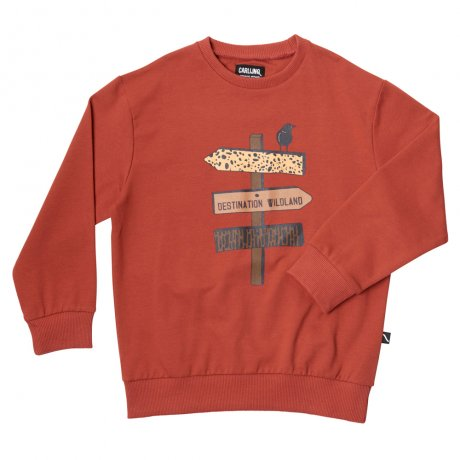 <img class='new_mark_img1' src='https://img.shop-pro.jp/img/new/icons8.gif' style='border:none;display:inline;margin:0px;padding:0px;width:auto;' />CarlijnQ / sweater red w/print on front / Destination WL / BL128