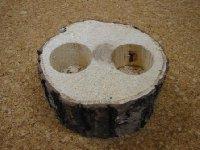 皿木 16グラム 2穴