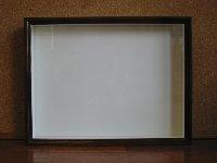バードウィング製標本箱 中型