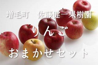 増毛町 りんご おまかせセット