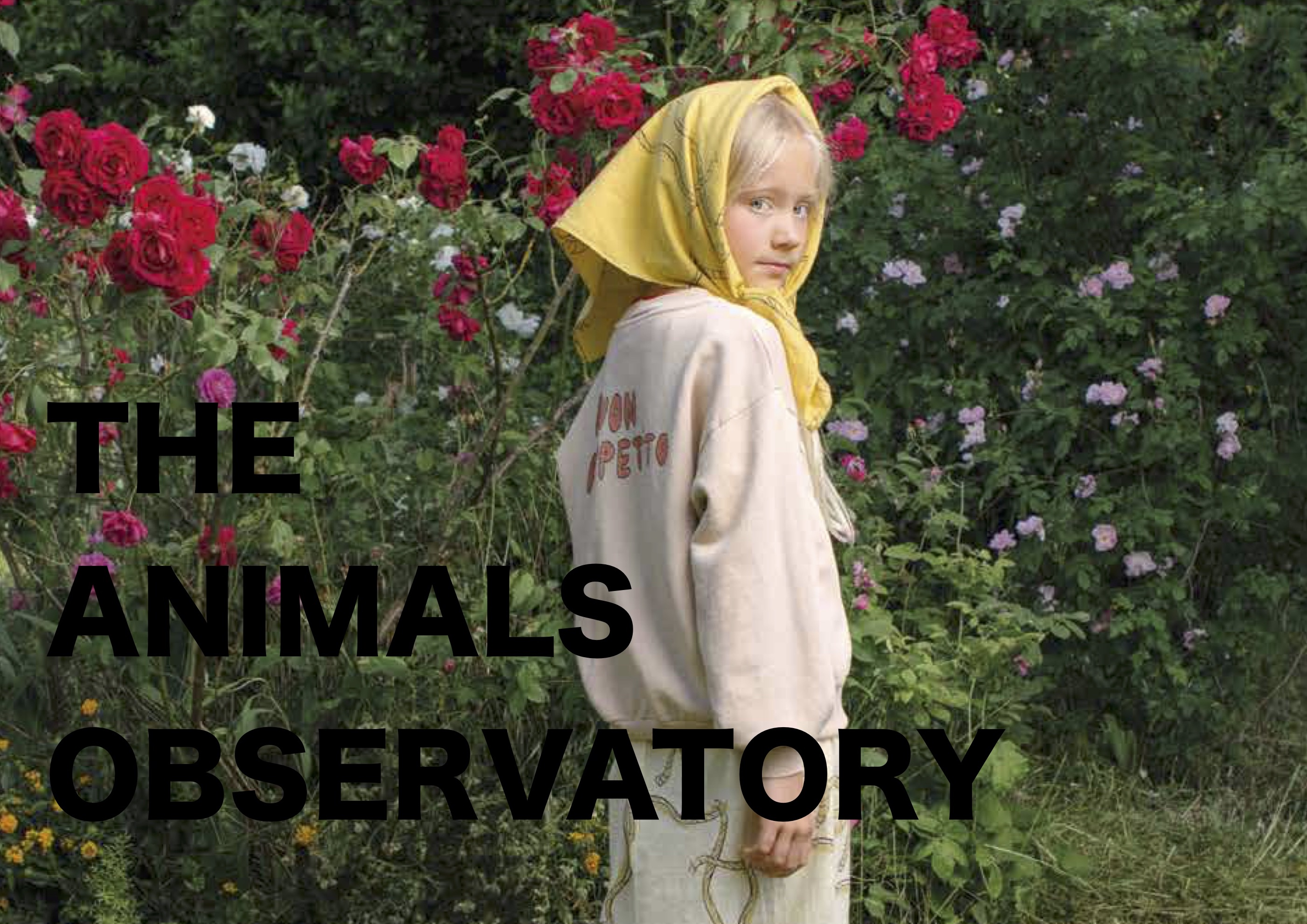 THE ANIMALS OBSERVATORY 18AW