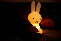 FIRST LIGHT miffy and friends