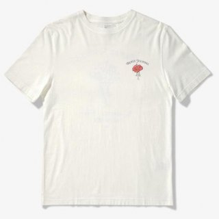 <img class='new_mark_img1' src='//img.shop-pro.jp/img/new/icons15.gif' style='border:none;display:inline;margin:0px;padding:0px;width:auto;' />WILLOW TEE SHIRT OFF WHITE