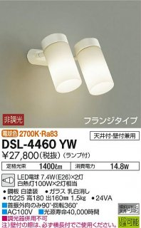 DSL-4460YW スポットライト 大光電機(DAIKO)