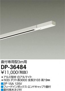 DP-36484 宅配便不可  配線ダクトレール 大光電機(DAIKO)