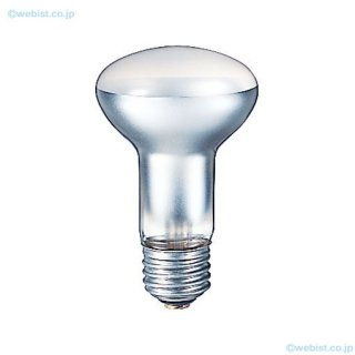RM110V38W  ランプ類 岩崎電気照明器具