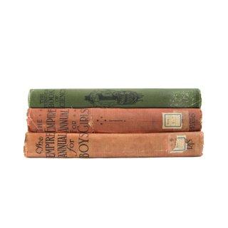 アンティーク 洋書 ・ 洋古書 3冊セット 児童書