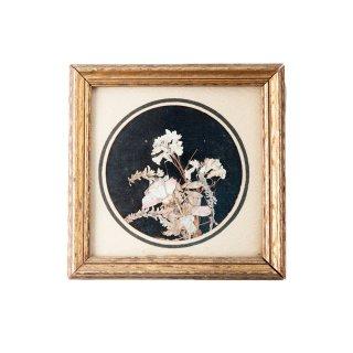 1900年代 押し花 アンティーク 木製フレーム